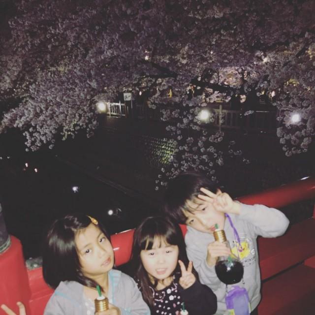 橋も、桜もライトアップされてます(^-^)/