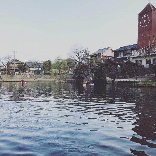 もう少ししたら、綺麗な桜が満開に咲きます(^-^)/ 水門川と、桜本当に綺麗です!!