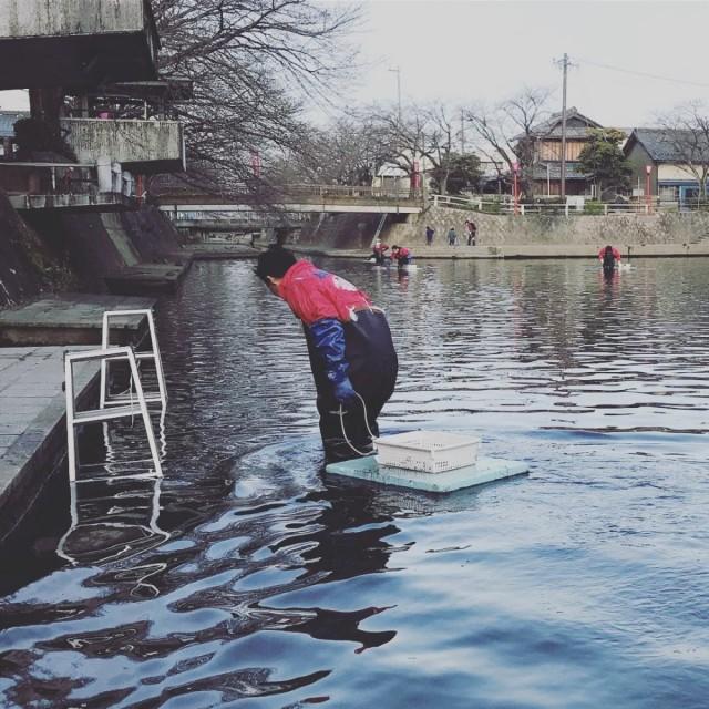 毎月第3日曜日は、早朝から水門川 河川清掃活動です(^-^)/ その後すぐにお店に戻り超バタバタでした!!