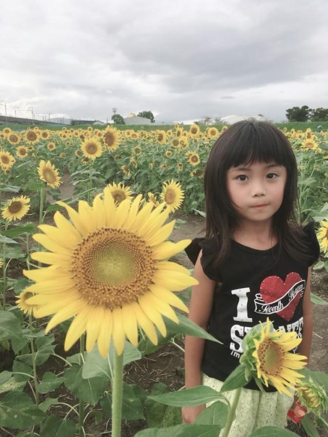 向日葵 と 娘 可愛いすぎ(^-^)/親バカですね!!